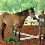 Connie Claire with LEO, DaVinci do Summerwind, champion gelding!