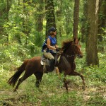 On the trail, me on Esthique do Premier, Aline Greene's MM mare