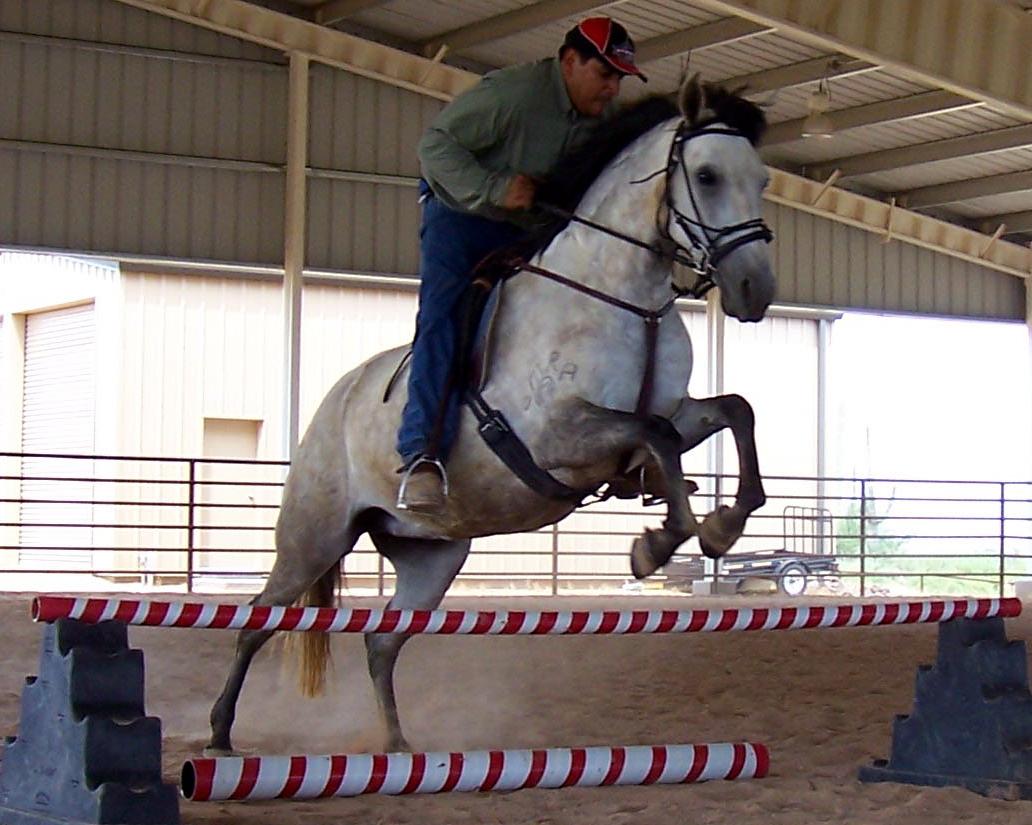 atriz.jumping